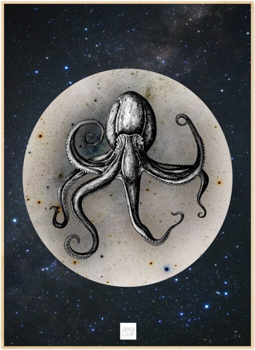 octopus space poster plakat desagraf
