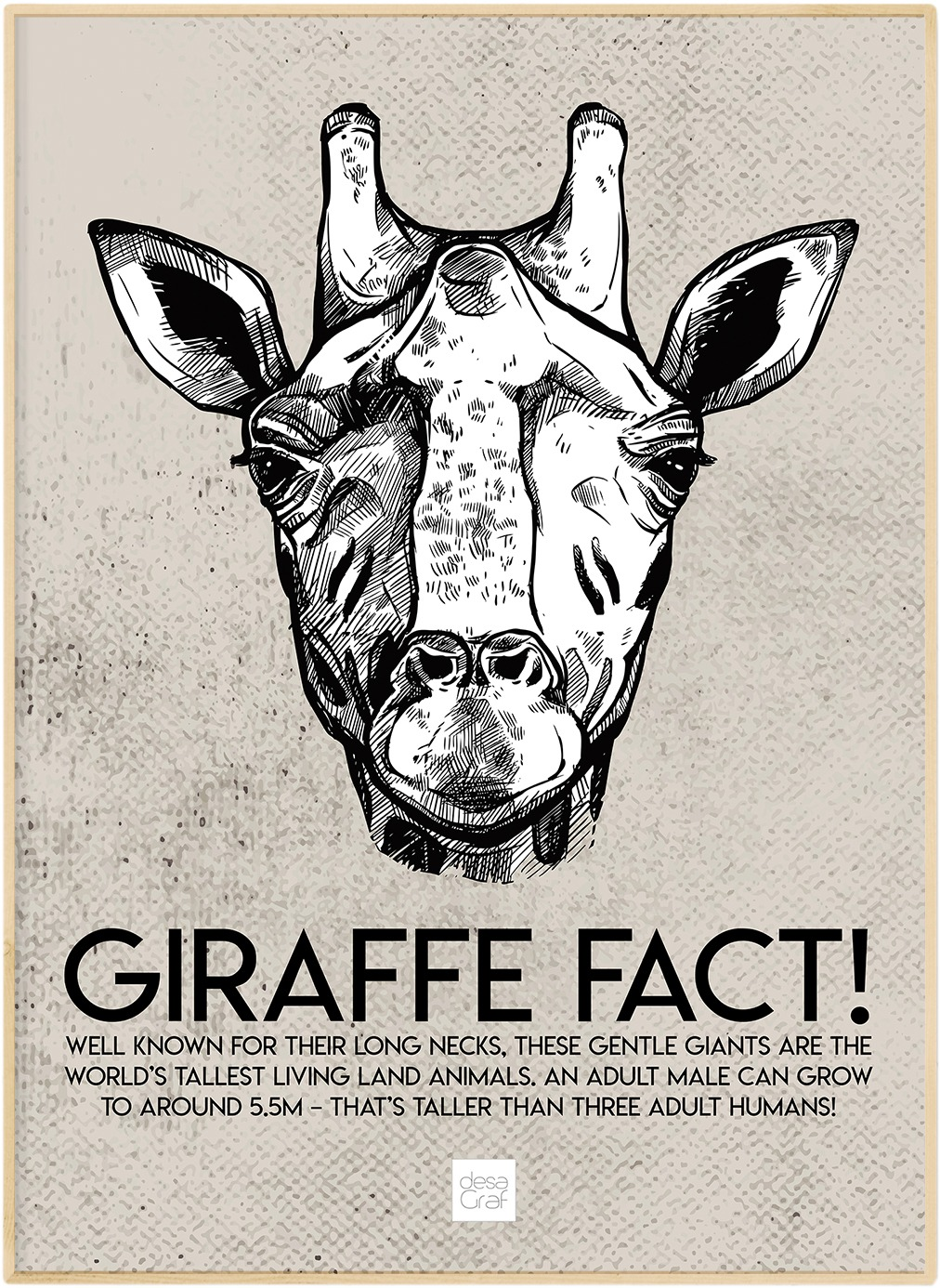 Image of   Giraffe Fact