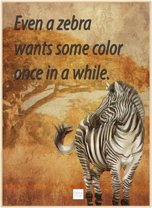 Zebra Wants Some Color
